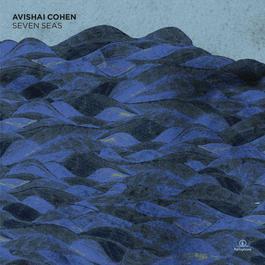 Seven Seas 2010 Avishai Cohen