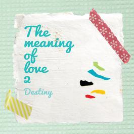 อัลบั้ม The Meaning of Love 2
