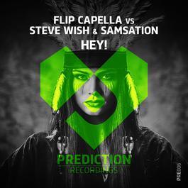 เพลง Flip Capella