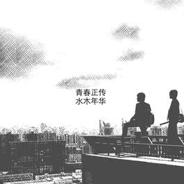 青春正传 2016 水木年华