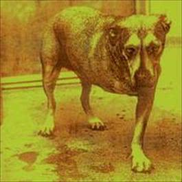 Alice In Chains 1995 Alice In Chains