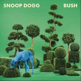 ฟังเพลงอัลบั้ม BUSH