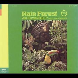 Rain Forest 2006 Walter Wanderley