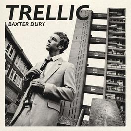 ฟังเพลงอัลบั้ม Trellic