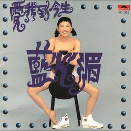 愛我到今生 2012 藍心湄
