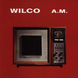 A.M. 2014 Wilco