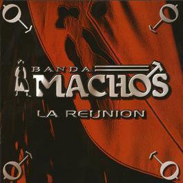 La Reunión 2004 Banda Machos