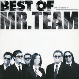 เพลง Mr.Team