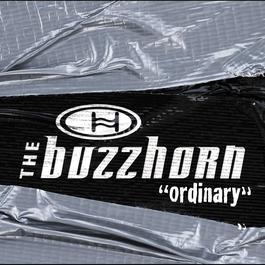 Ordinary (Online Music) 2002 Buzzhorn
