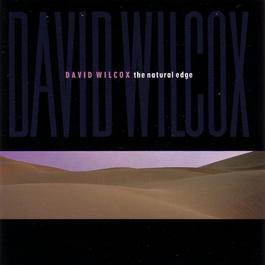 The Natural Edge 2006 David Wilcox