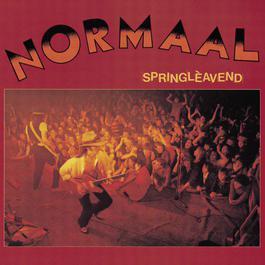 Springleavend 2004 Normaal