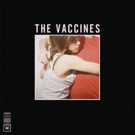 What Did You Expect From The Vaccines? 2011 The Vaccines