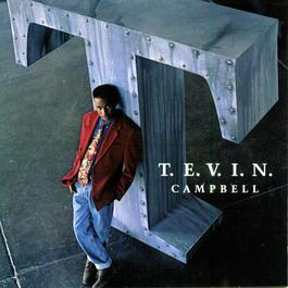 ฟังเพลงอัลบั้ม T.E.V.I.N.