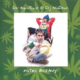 Fotel Bujany 2009 Dr KamSzot