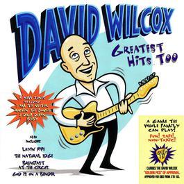 Greatest Hits Too 2006 David Wilcox
