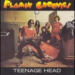 Teenage Head 2008 The Flamin Groovies