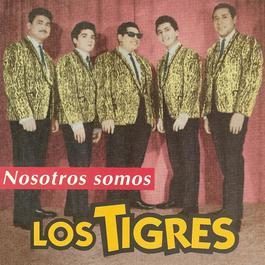 Nosotros Somos 2007 Los Tigres