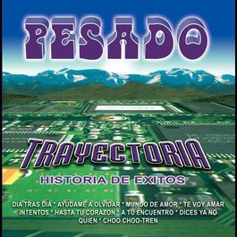 Trayectoria 2010 Pesado