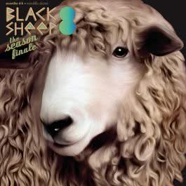 อัลบั้ม Blacksheep Compilation Volume 8