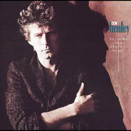 Building The Perfect Beast 1993 Don Henley