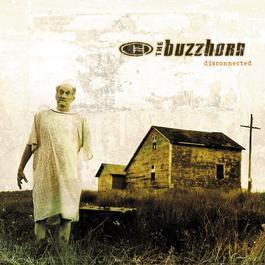 Disconnected 2010 Buzzhorn