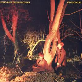 Crocodiles 2003 Echo & The Bunnymen