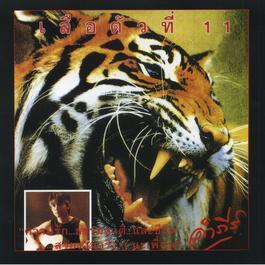 ฟังเพลงอัลบั้ม เสือตัวที่ 11