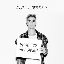 อัลบั้ม What Do You Mean?