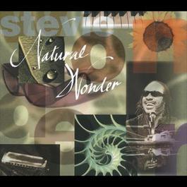 Natural Wonder 1995 Stevie Wonder