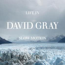 Life In Slow Motion 2006 David Gray