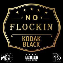อัลบั้ม No Flockin