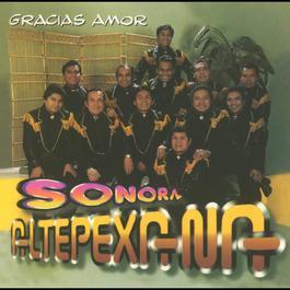 Gracias amor 2010 La Sonora Altepexana