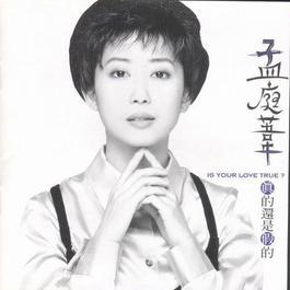 真的还是假的 1995 Meng Tingwei