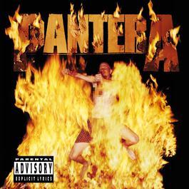 Reinventing The Steel 2013 Pantera