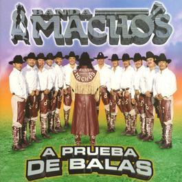 A prueba de balas 2010 Banda Machos
