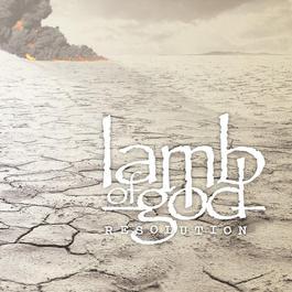 Resolution 2013 Lamb of God