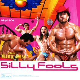 เพลง Silly Fools