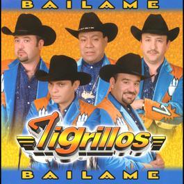 Báilame 2010 Los Tigrillos