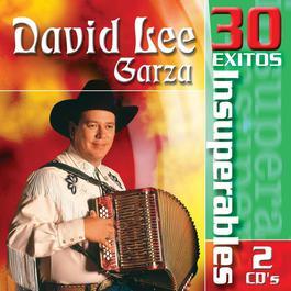 30 Exitos Insuperables 2008 David Lee Garza