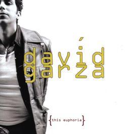 This Euphoria 2009 David Garza