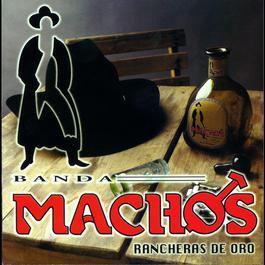 Rancheras de oro 2004 Banda Machos