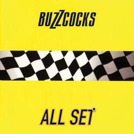 All Set 2007 The Buzzcocks