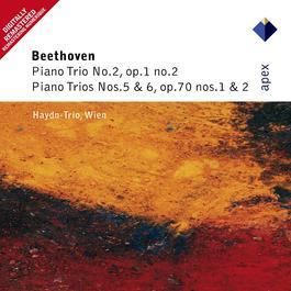 Beethoven : Piano Trios Nos 2, 5 & 6  -  Apex 2007 Haydn Trio Wien