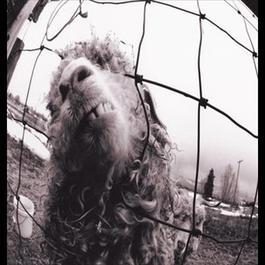 Vs. 2011 Pearl Jam