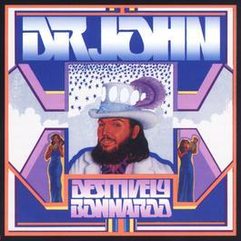 Destively Bonnaroo 2007 Dr. John