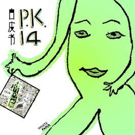 白皮书 2005 P.K.14