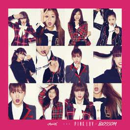 อัลบั้ม Pink LUV + Blossom