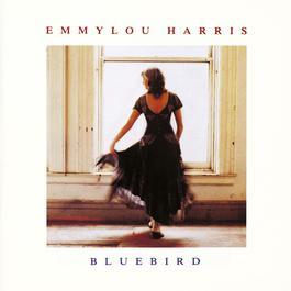 Bluebird 2009 Emmylou Harris