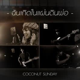 เพลง Coconut Sunday