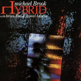 Hybrid 2009 Michael Brook